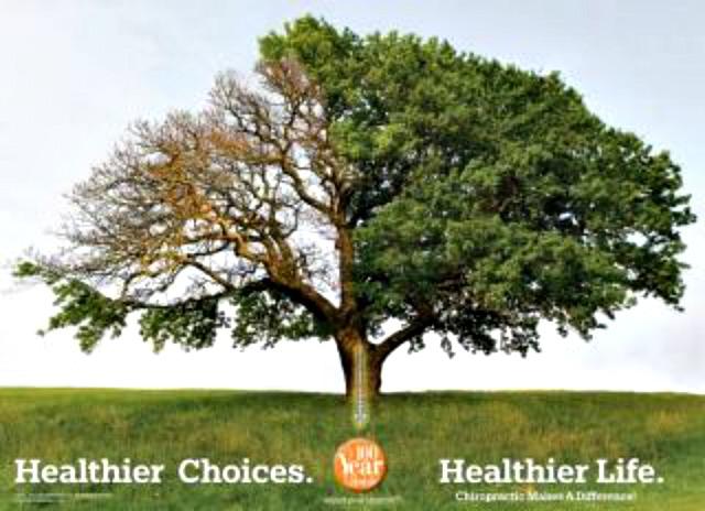 100 Healthy Years